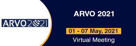 ARVO 2021