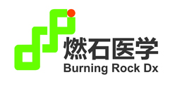 Burning Rock Dx