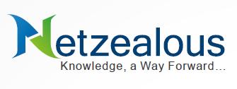 NetZealous LLC