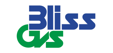 Bliss Gvs Pharma Ltd